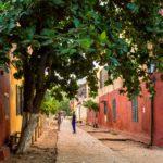 lavoro in Senegal
