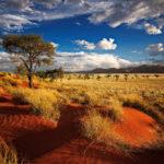 Alcune cose da sapere sulla Namibia