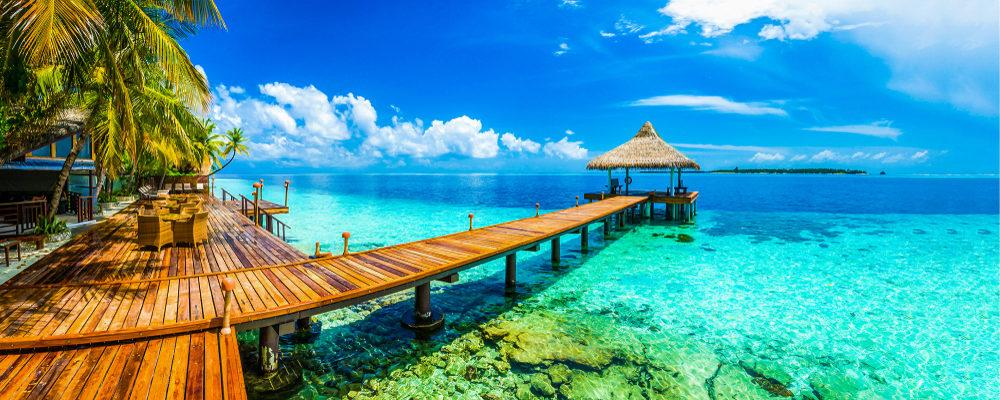 Il miglior lavoro al mondo: vendere libri in un lussuoso resort alle Maldive