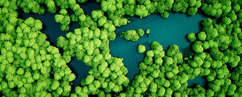 La saggezza indigena dell'Amazzonia potrà salvare il pianeta