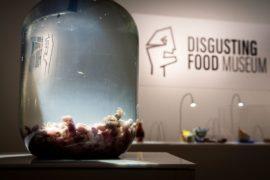 Svezia: nasce il museo dedicato ai cibi disgustosi
